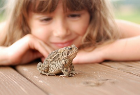 child with toad